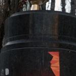 A golden toilet replaces Lenin satue during Ukraine protest