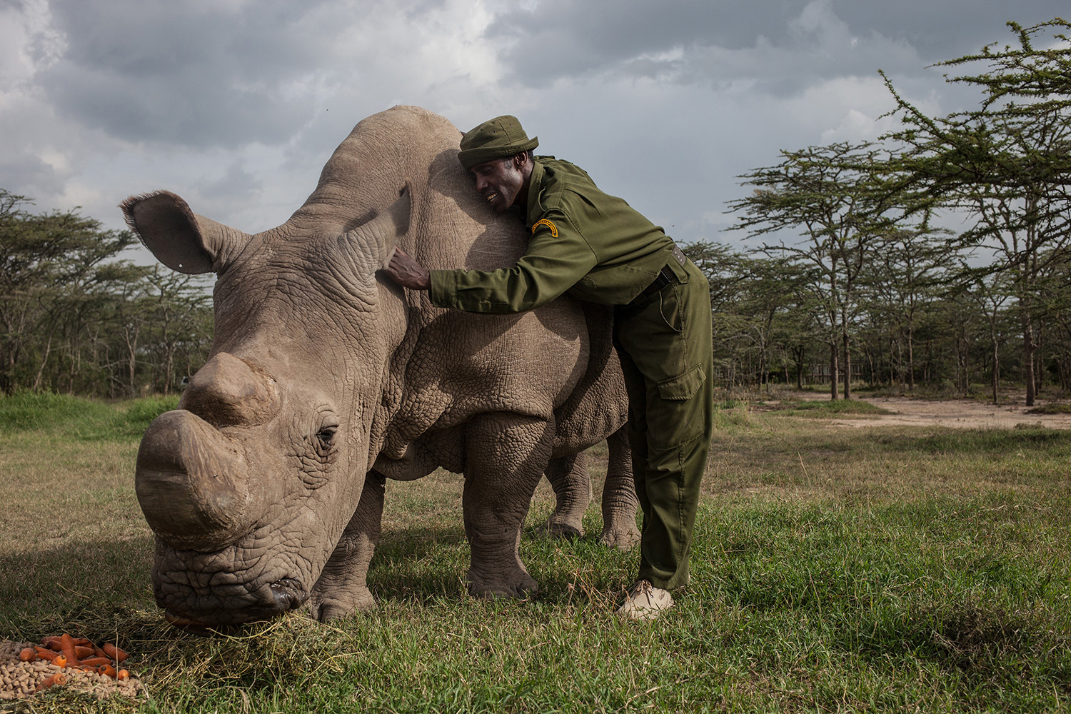 Kenya - Almost the end for Kenya's northern white rhino