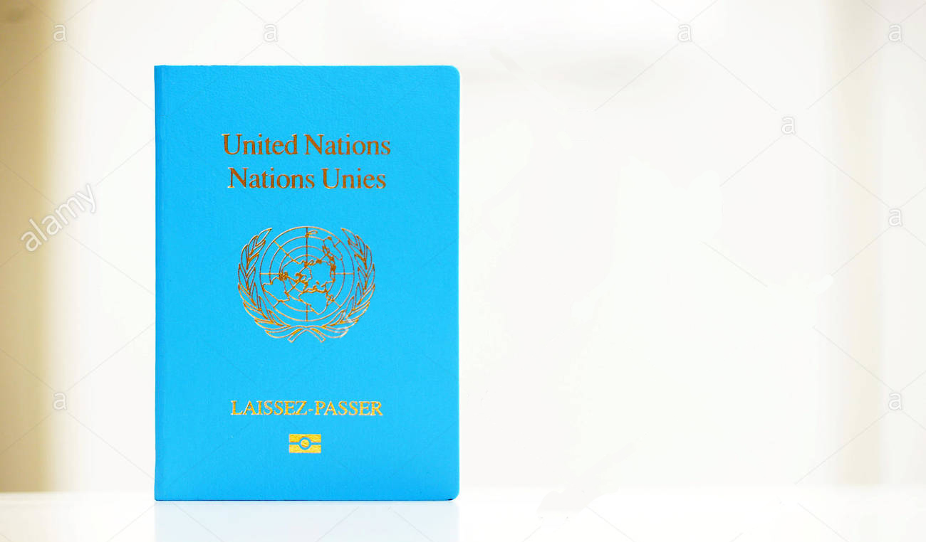 Паспорт ООН