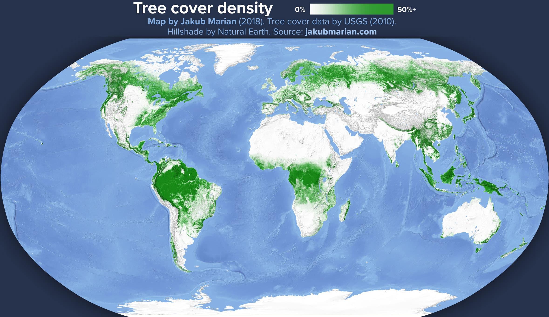 Карта лесов мира