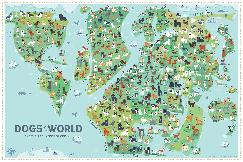 Карта стран происхождения собак