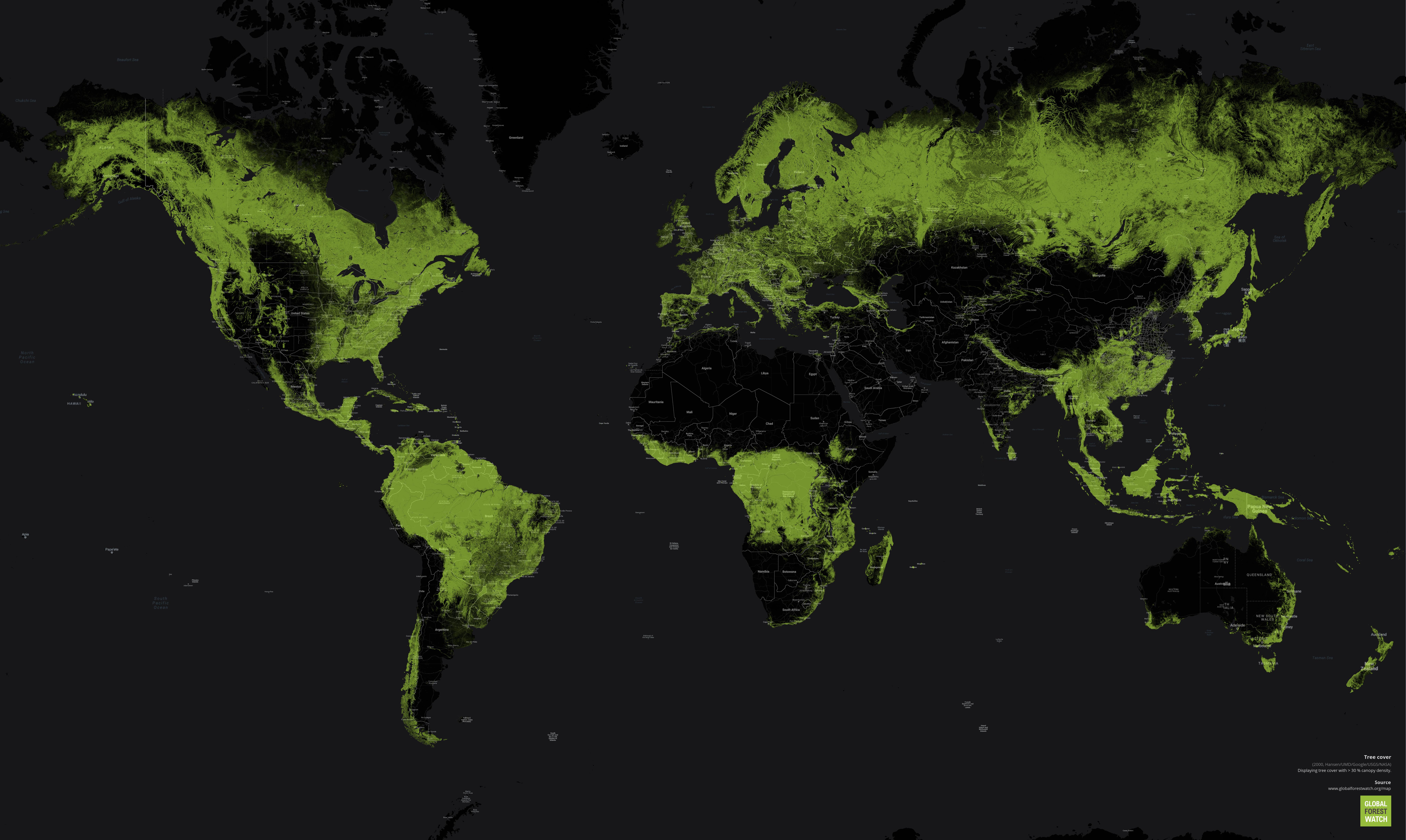 Карта лесов планеты